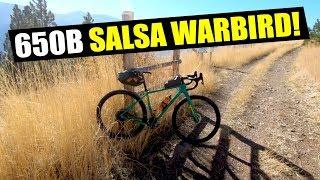 650B SALSA WARBIRD