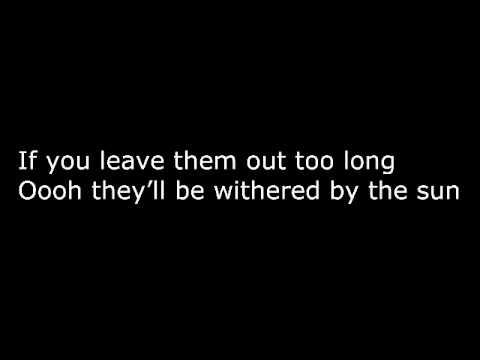 La Roux  In For The Kill Skrillex Remix WLyrics