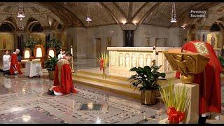 The Sunday Mass - Palm Sunday - April 5, 2020 CC