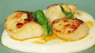 Seared Scallops With Chorizo Butter, Cauliflower Puree And Pea Shoots: Simply Gourmet - S01E2/8
