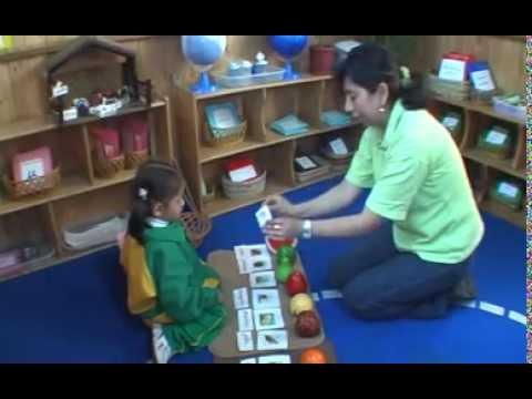 Metodo Montessori En Kreatividad Youtube