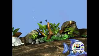 VR Aquarium  Virtual Aquarium