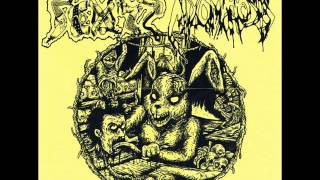 Mixomatosis / Scuzz - full split