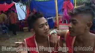 Download lagu Jomblo Bebas Bujang Ganong KentongPongge Story whatsapp MP3