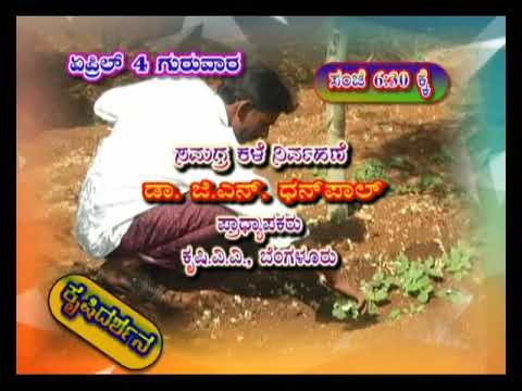 Krishidarshan Programs on DD Chandana | 04-04-19 | Promo