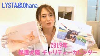 2019年 保護わんにゃんチャリティーカレンダー予約受付開始!LYSTA&Ohana