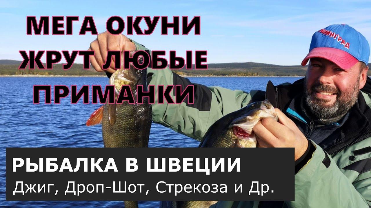 Вот это рыбалка! Окуни-монстры на заброс. Рыбалка в Швеции. [Часть первая].
