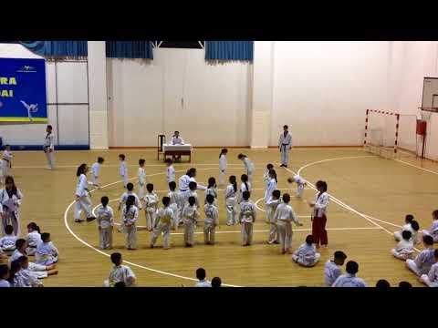 Thi lên đai Taekwondo
