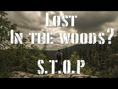 Lost in the woods? S.T.O.P! -Survival Lessons