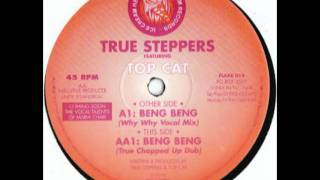 True Steppers Ft Top Cat - Beng Beng (Why Why Vocal Mix)