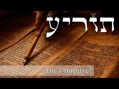 Parashat Tazria - Are you impure? - Rabbi Alon Anava