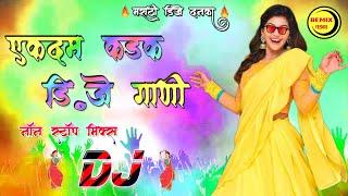 एकदम कडक डी जे गाणी - Ekdam Kadak DJ Gani | 2019 | Marathi Remix Song's