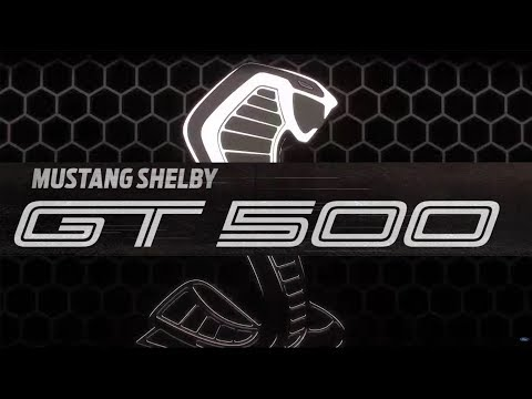 ITS OFFICIAL! | MEET THE  SHELBY GT + Horsepower