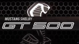 ITS OFFICIAL! | MEET THE 2019 SHELBY GT500 700+ Horsepower