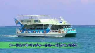 色とりどりの魚が泳ぐサンゴの海を水中展望室から眺めよう! さわやかな...