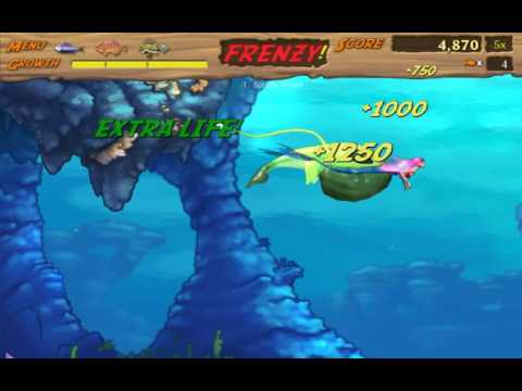 Feeding Frenzy 2 #10 (Final) : Play as Anh za đen