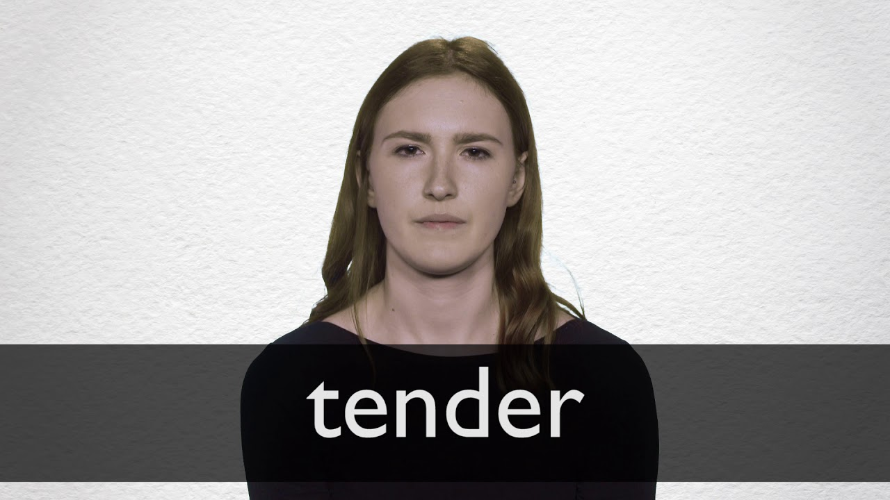 Tender definition and meaning | Collins English Dictionary