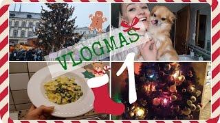 OPOŽDĚNÝ VLOGMAS #1!!! Brno, trhy, vaření, etc.