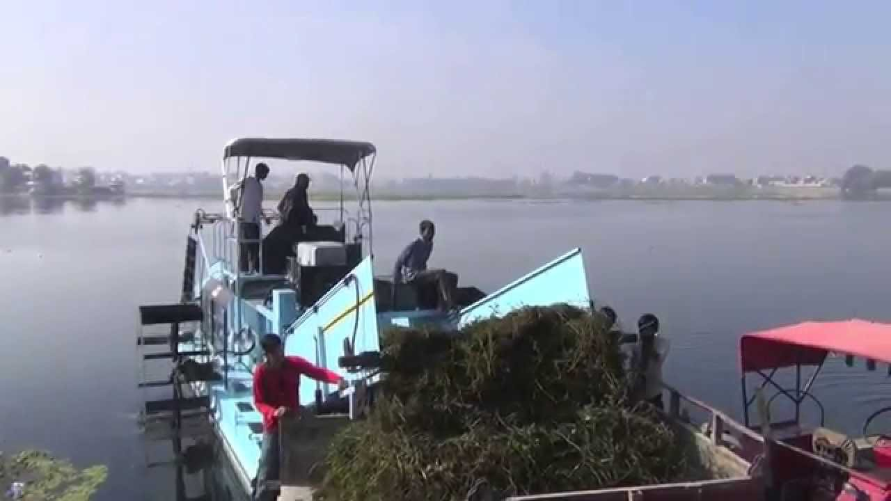 Cleantec Infra Deweeding Clean Up Of Kishore Sagar Lake In Kota Rajasthan Youtube