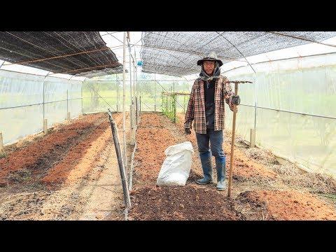 วิธีเตรียมดินให้เหมาะต่อการปลูกพืช ง่ายๆแบบนี้ใครๆก็ทำได้