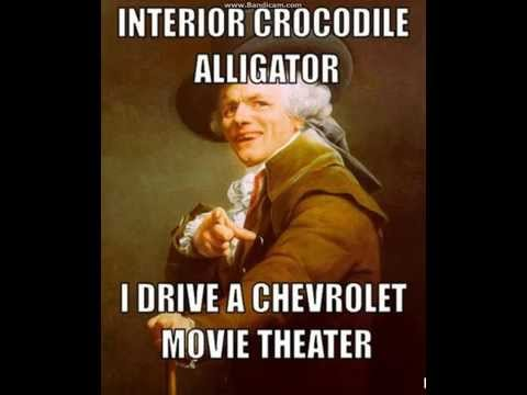 Interior Crocodile Alligator - YouTube