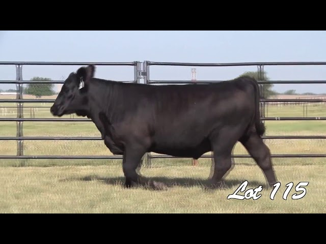 Pollard Farms Lot 115