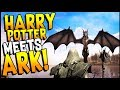 HARRY POTTER MEETS ARK + SKYRIM! Dragons, Magic, Open World! - Citadel: Forged With Fire