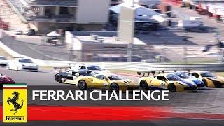 Ferrari Challenge North America - COTA 2017: Recap