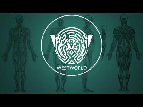 Ramin Djawadi - Paint It Black (Westworld...