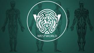 Ramin Djawadi - Paint It Black (Westworld Season 2 Soundtrack)