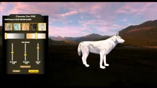 Wolf Quest Jak wejść w Multiplayer