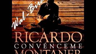 Ricardo Montaner   Convénceme video oficial