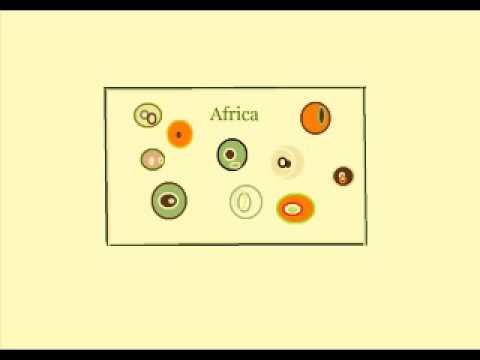 Fausto Papetti Africa