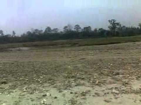 Bhikhnathori west champaran, Bihar