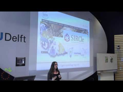 03 Flor Avelino (DRIFT) - Transformative social innovation