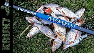 Рыбалка на карася с Ног на Голову Неожиданно поймал другой Рыбы рыбалка карась поплавок плотва