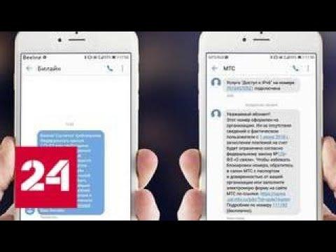Мобильные операторы попросят абонентов подтвердить свою личность - Россия 24