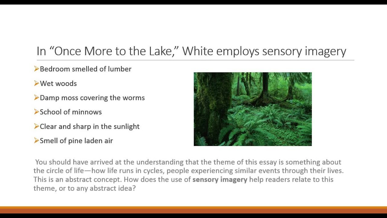 u l analyzing theme in text once more to the lake  u1 l7 analyzing theme in text once more to the lake