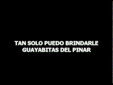 Karaoke Original de Manzanillo (Guayabitas del pinar)