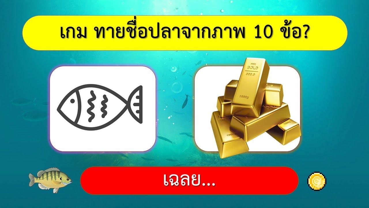 เกม ทายชื่อปลาจากภาพ 10 ข้อ