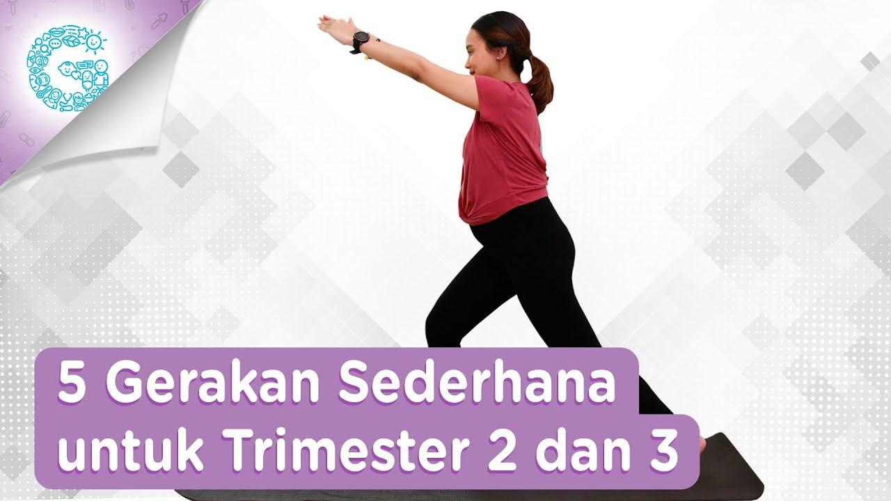 5 Gerakan Olahraga Mudah Untuk Ibu Hamil Trimester 2 3 Adianti Reksoprodjo Youtube
