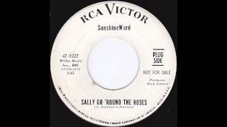 SUNSHINEWARD SALLY GO ROUND THE ROSES