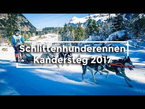 🛷 Schlittenhunderennen Kandersteg 2017 🐺