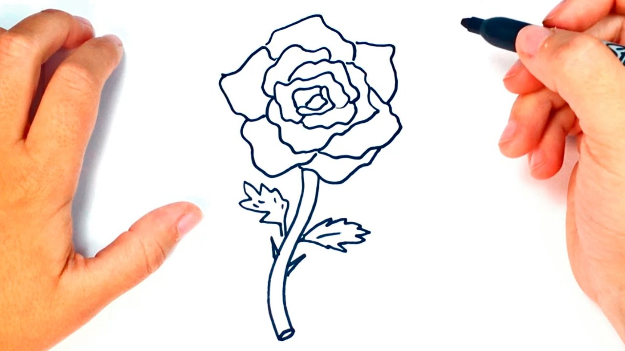 How To Draw A Rose Rose Easy Draw Tutorial