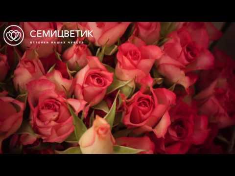 Розовые кустовые