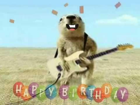 Happy Birthday Prairie Dog Style YouTube