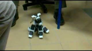 Zabawny pies - robot interaktywny
