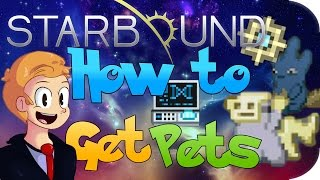 How to Get Pets in Starbound