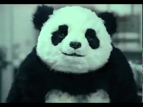Never say no to Panda ad