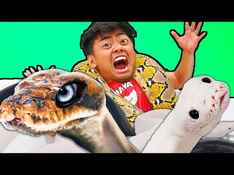 Giant Snake Hot Tub Bath Challenge!